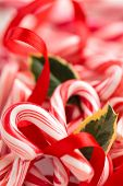 stock photo of holly  - Backgrounds - JPG