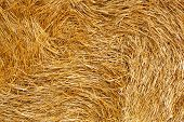 stock photo of husbandry  - Hay bales on the field after harvest - JPG