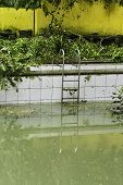 stock photo of typhoon  - Dirty swimming pool after a strong typhoon - JPG