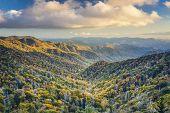 stock photo of gatlinburg  - Dawn in the Smoky Mountains National Park - JPG