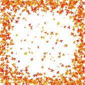 Постер, плакат: Падение осенние листья