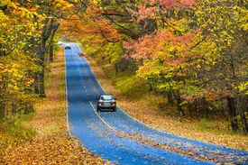 image of twisty  - Asphalt road with autumn foliage  - JPG