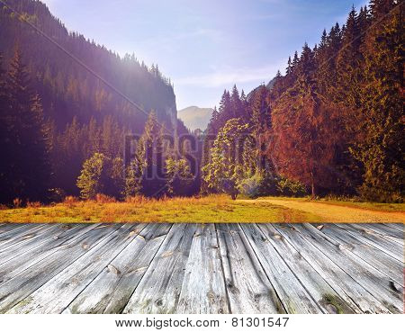 Wood Terrace And Perspective View On Forest Mountains