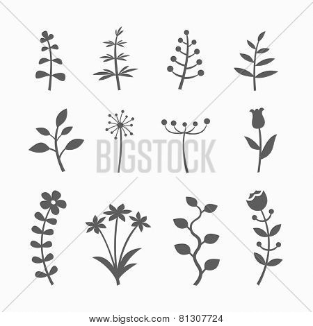 Vector set of floral graphic design elements with flowers, branches and sprouts