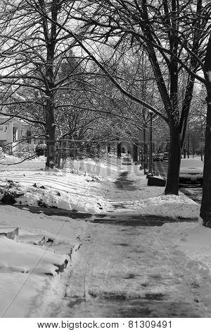 Snowy neighborhood sidewalk