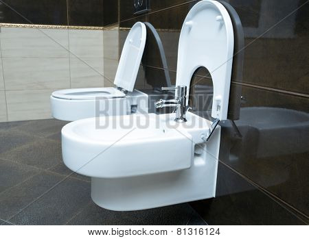Luxury bathroom closeup - the water-closet and bidet.
