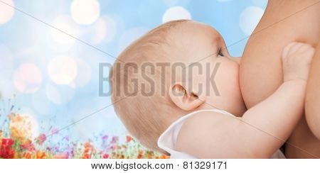 motherhood, children, people and care concept - close up of mother breast feeding adorable baby over blue sky with lights and poppy field background