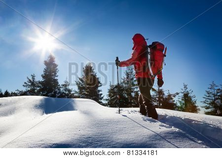 Winter hiking. A trekker, walking in the snow, takes a rest for admire the panorama. Sunny and frosty winter day. Italian Alps, Europe.