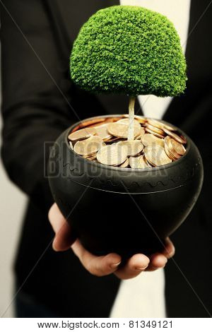 Green tree growing in ceramic pot full of coins, pot in hand