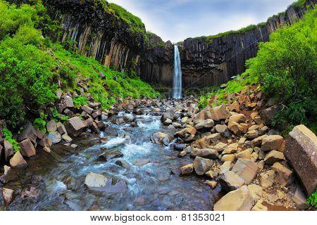 Picturesque waterfall Svartifoss in Skaftafell National Park of Iceland. Black basalt columns frame the water jet