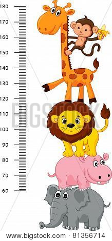 Meter wall with funny Cheerful animals cartoon