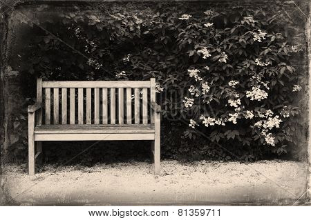 Bench In The Park. Remember The Good Old Times. Damaged Photography. Retro & Vintage Postcards.