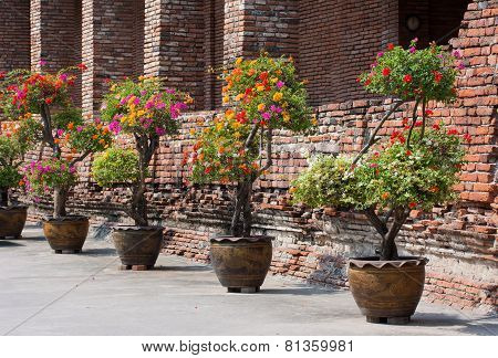 Jardiniere On Brick Wall Background