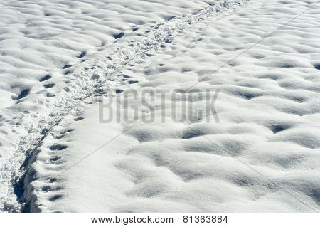 Snow shoe trail in snow.