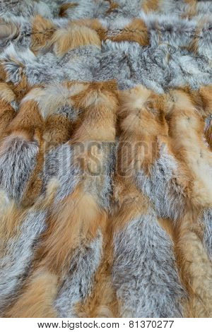 Red fox fur background