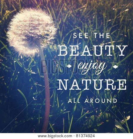 Inspirational Typographic Quote - See the beauty enjoy nature all around