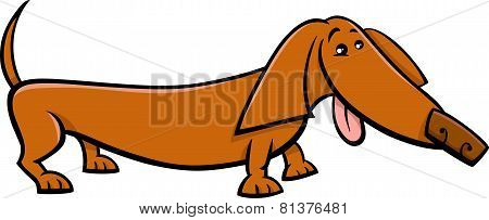 Dachshund Dog Cartoon Illustration