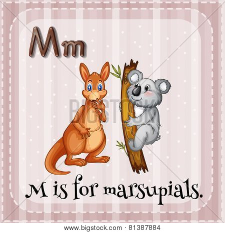 Illustration of a letter M is for marsupials