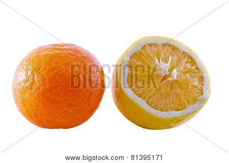 Tangerine And Lemon
