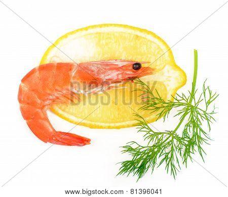 shrimp, a lemon, fennel