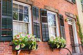 picture of west village  - West Village in New York Manhattan flowers window facades USA NYC - JPG