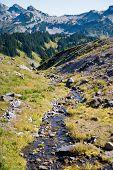 Stream of glacier melt along the hiking trail of Mt. Rainier poster