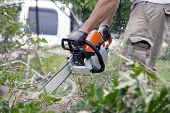pic of cutting trees  - Worker uses a chainsaw to cut around trees - JPG