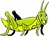 pic of crawling  - Illustration of a grasshopper crawling viewed from the side set on isolated white background done in cartoon style - JPG