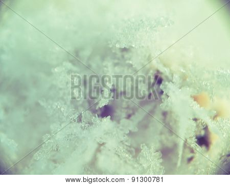 Supermacro Of Snow