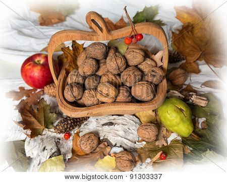 Autumn Theme. Walnuts And Apples