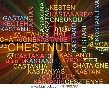 Background concept wordcloud multilanguage international many language illustration of chestnut glowing light