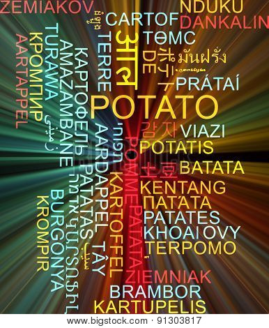 Background concept wordcloud multilanguage international many language illustration of potato glowing light