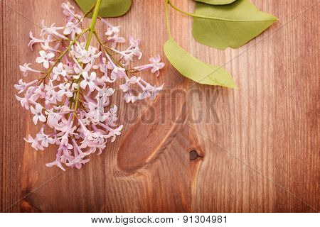 Lilacs On A Wooden Table