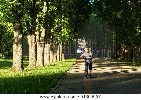 little boy on scooter