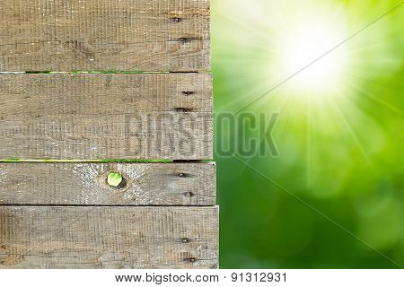 Wooden With Green  Background