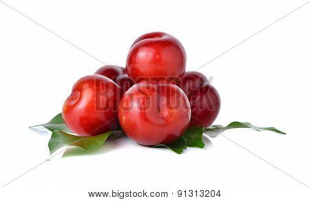 Ripe Plum Fruit On White Background