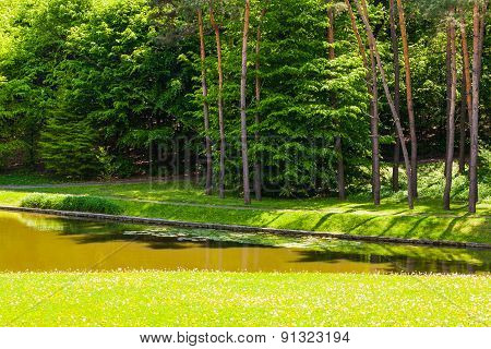 Summer Landscape River