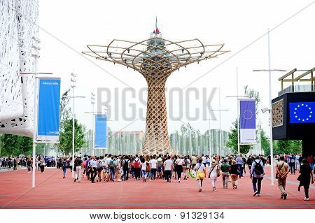 The Tree Of Life At Expo Milano 2015