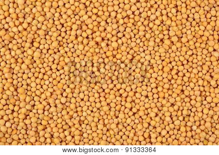 White Mustard Seeds Background