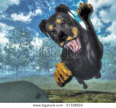 Rottweiller dog running - 3D render