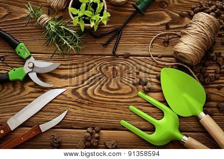 Gardening tools, watering can, seeds, plants. frame background with copy space
