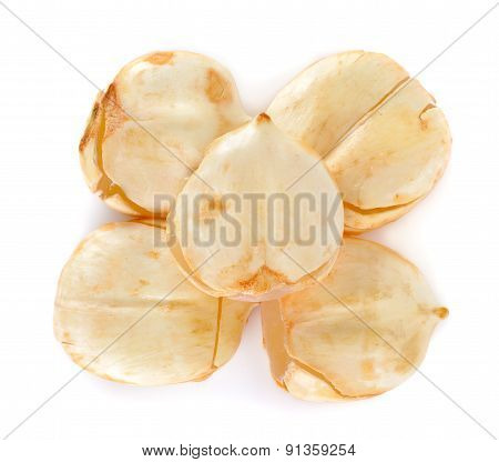 Asian Palmyra Palm, Toddy Palm, Sugar Palm Isolated On White Background
