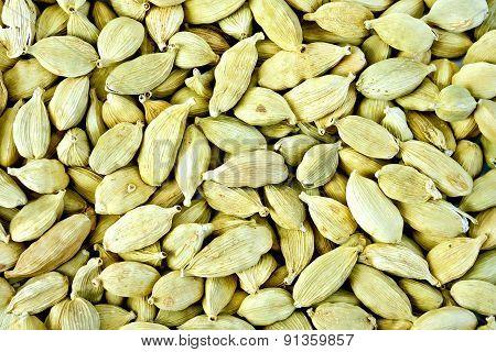 Cardamom texture