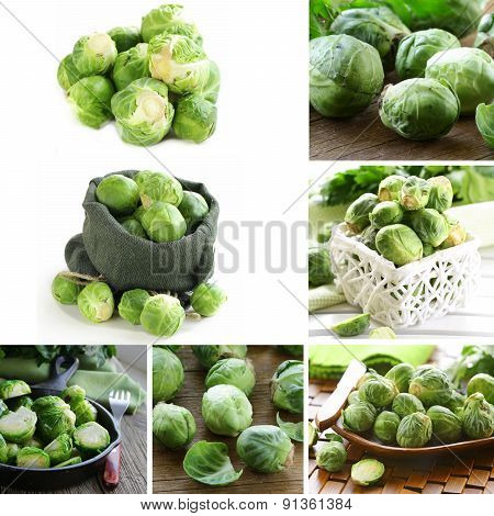 collage of natural organic green brussels sprouts