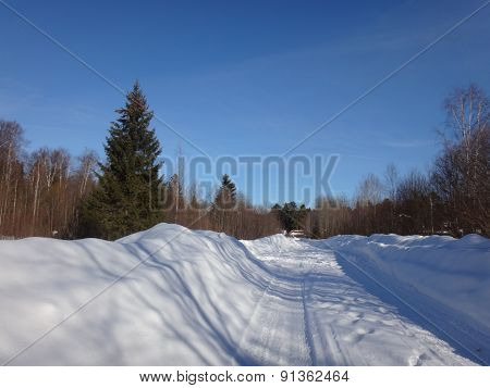 Road in the snow and forest around