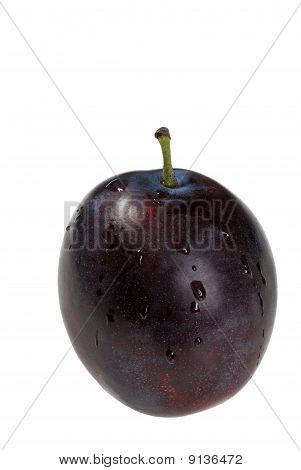 isolated wet plum