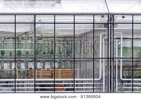 Transparent Glass Wall Of Greenhouse