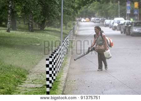 Woman Cleaning Park Footpath