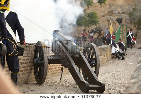 Napoleonic Artillery Shooting