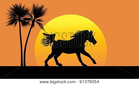 Silhouette of a horse galloping against setting sun, with two palm trees
